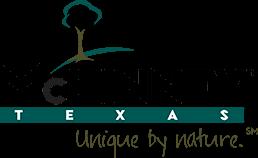 Logo for McKinney Public Library System